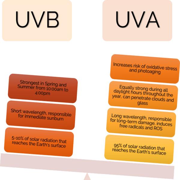 UVA UVB Rays Protection